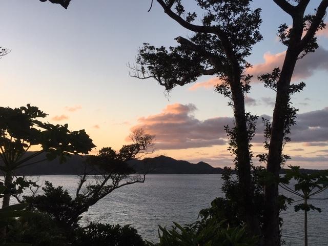 奄美大島の朝