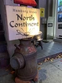 north-continent_m02.jpg