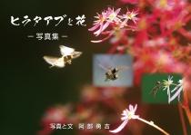 ヒラタアブと花