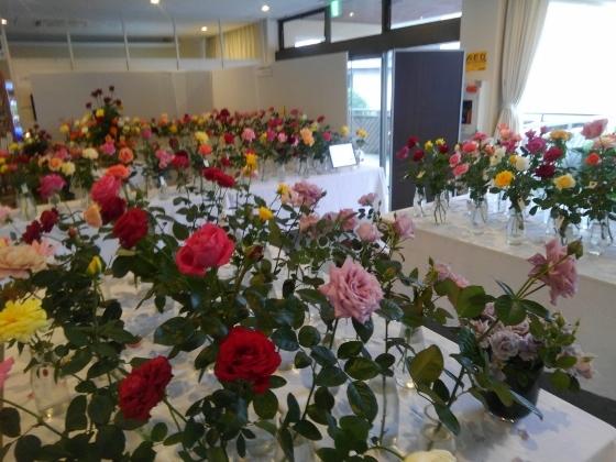 神宮会館薔薇