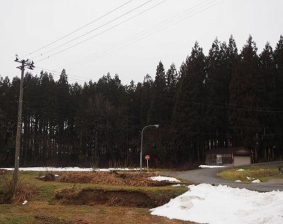 P2010364.jpg