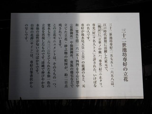204-2-20.jpg