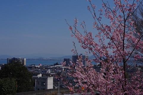 琵琶湖200307