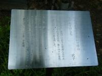 2019-06-23花巻温泉薔薇園202