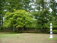 2019-07-01毛越寺あやめ祭り207