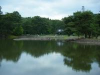 2019-07-01毛越寺あやめ祭り213