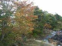 2019-10-26秋の厳美渓024