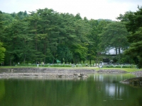 2019-07-01毛越寺あやめ祭り215