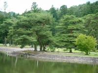 2019-07-01毛越寺あやめ祭り216