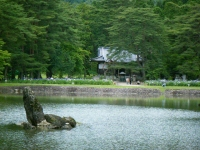 2019-07-01毛越寺あやめ祭り220