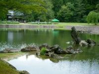 2019-07-01毛越寺あやめ祭り221