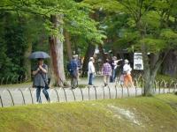2019-07-01毛越寺あやめ祭り223