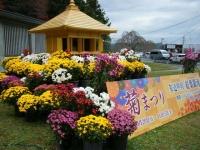 2019-11-09中尊寺菊祭り紅葉001