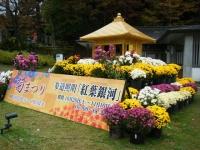 2019-11-09中尊寺菊祭り紅葉002