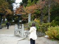 2019-11-09中尊寺菊祭り紅葉004