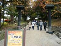2019-11-09中尊寺菊祭り紅葉005