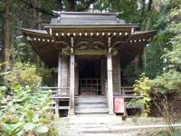 2019-11-09中尊寺菊祭り紅葉020