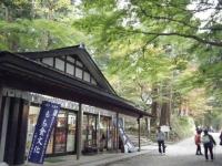 2019-11-09中尊寺菊祭り紅葉024