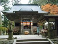 2019-11-09中尊寺菊祭り紅葉034