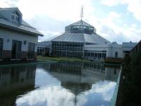花と泉の公園2019-11-16-001