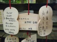 2019-11-09中尊寺菊祭り紅葉038