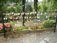 秋の花巻温泉街バラ園2019-09-28-111