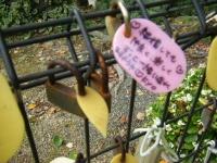 秋の花巻温泉街バラ園2019-09-28-112