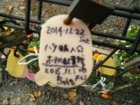 秋の花巻温泉街バラ園2019-09-28-113