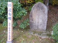 2019-11-09中尊寺菊祭り紅葉067