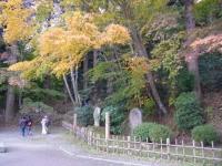 2019-11-09中尊寺菊祭り紅葉068