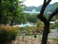 秋の花巻温泉街バラ園2019-09-28-140