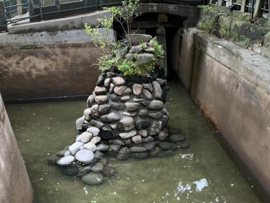 海南神社2020 7