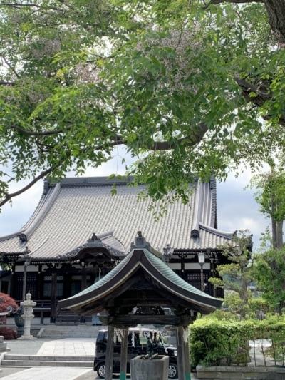 鎌倉5-20 10