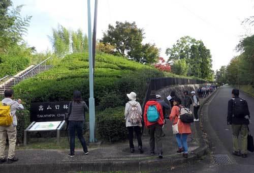 191107高山竹林園
