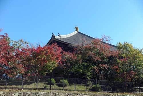 191113大仏殿