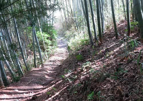 200305山の辺の道3