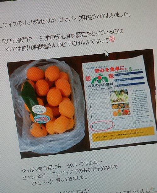 記事びわ20200608DSC_3782