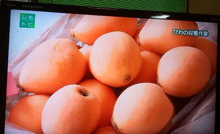パック果実