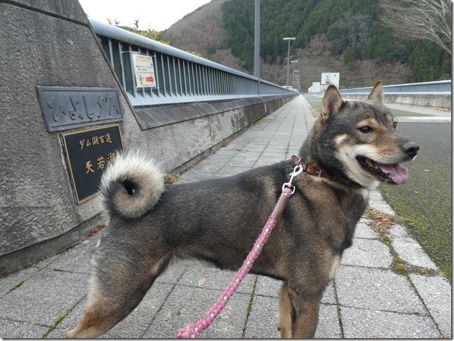 20191215ダム散歩京都02-04