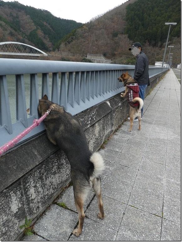 20191215ダム散歩京都02-08