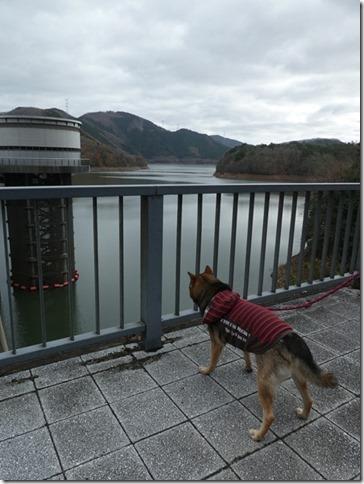 20191215ダム散歩京都02-22