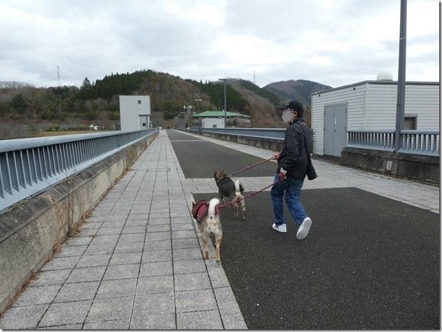 20191215ダム散歩京都02-29