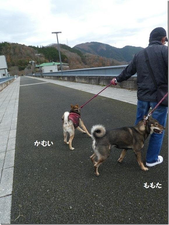 20191215ダム散歩京都02-30