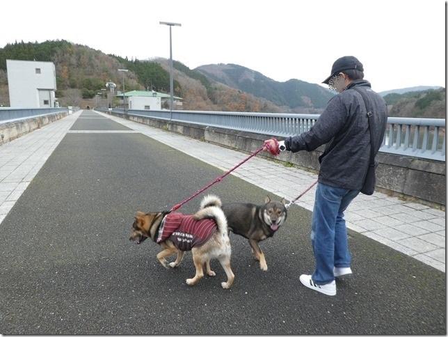 20191215ダム散歩京都02-31