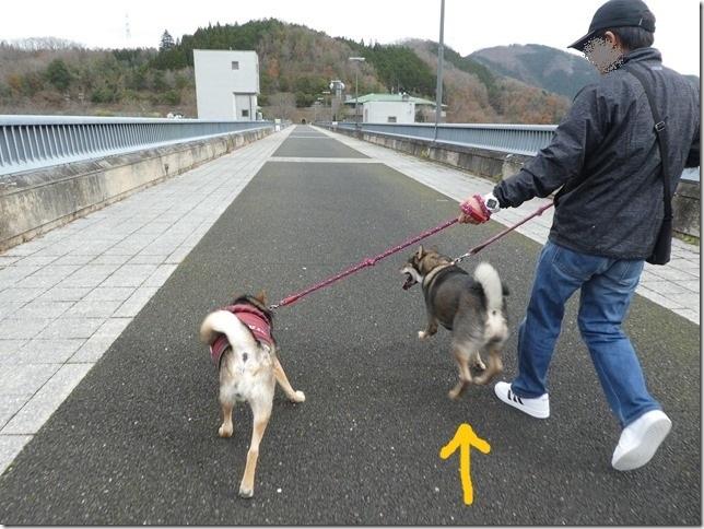 20191215ダム散歩京都02-32