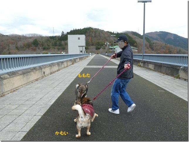 20191215ダム散歩京都02-33