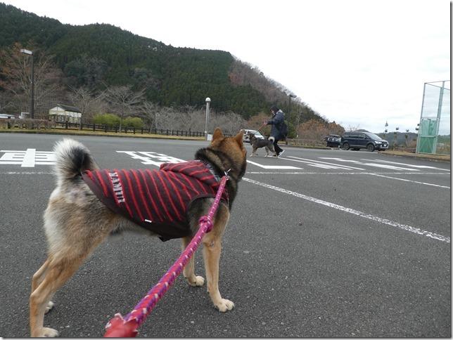 20191215ダム散歩京都03-07