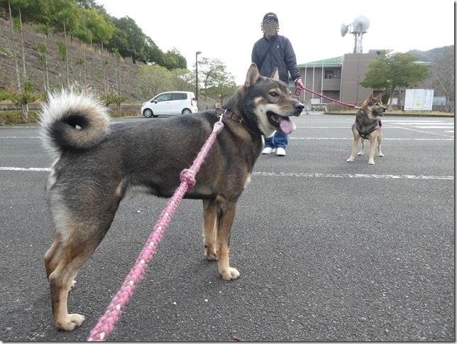 20191215ダム散歩京都03-10