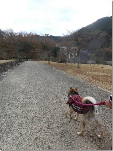 20191215ダム散歩京都05-01