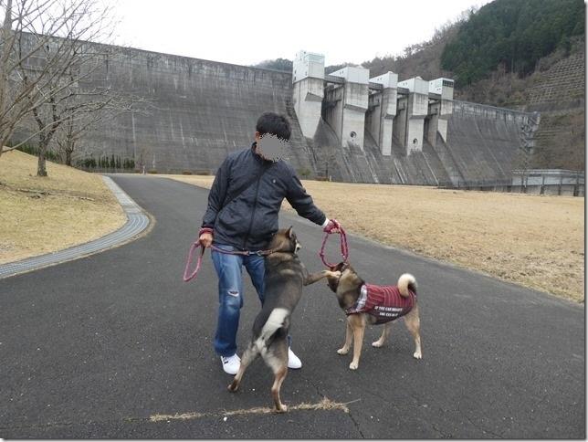 20191215ダム散歩京都05-07
